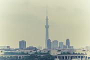Tokyo Skytree Print by Gregory Ferguson