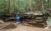 Swallow Falls State Park Art - Tolliver Falls in Swallow Falls State Park Maryland by Brendan Reals