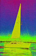 First Star Digital Art Prints - Tom Rays Sailboat Print by First Star Art