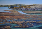 Sonoma County Originals - Tomales Bay Tangents by Debbie Harding