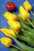 Yellow Tulips Posters - Tomato and tulips Poster by Garry Gay