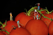 Challenging Art - Tomato Beach Golf Classsic by Bob Christopher