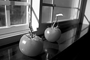 Window Sill Photo Posters - Tomato Stew Poster by Ed Boudreau