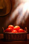 Wicker Framed Prints - Tomatoes at an Old Farm Stand Framed Print by Olivier Le Queinec