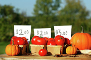 Basket Prints - Tomatoes for sale Print by Sandra Cunningham