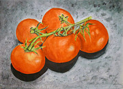 Linda Pope Prints - Tomatoes Print by Linda Pope