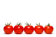 Ripe Photo Metal Prints - Tomatoes Metal Print by Olivier Le Queinec