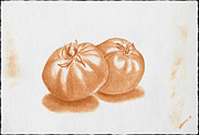 Tomato Drawings Framed Prints - Tomatoes Framed Print by Tommy Villarreal