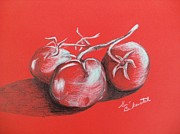 Tomato Drawings Framed Prints - Tomatos On Red Framed Print by Geri Berkenstock