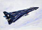 Airplane Paintings - Tomcat Playboy by Mark Jennings