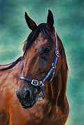 Animals Paintings - Tommy - Horse Painting by Michelle Wrighton
