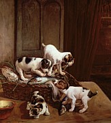 Puppies Painting Prints - Tomorrow will be Friday Print by John Hayes