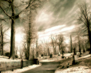 Haunted Digital Art - Toned Infrared Graveyard  by Gothicolors With Crows