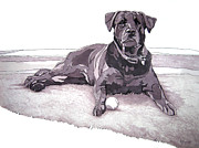 Grayscale Drawings - Tonka by Tyler Auman