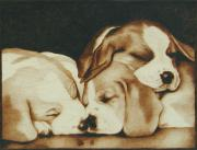 Pet Portraits Pyrography - Too Pooped To Party by Cate McCauley