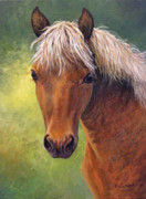 Equine Paintings - Top Notch by Fawn McNeill