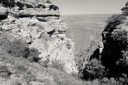 South Kaibab Trail Prints - Top of the South Kaibab Trail BW Print by Julie Niemela