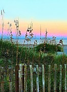 Sand Fences Posters - Topsail Island Dunes and Sand Fence Poster by Julie Dant