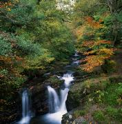 Rivers In The Fall Photo Framed Prints - Torc Waterfall, Ireland,co Kerry Framed Print by The Irish Image Collection