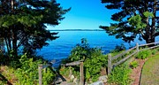 Torch Photos - Torch Lake from Alden Park by Twenty Two North Photography
