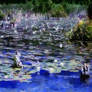 Michelle Calkins - Torch River Water Lilies ll