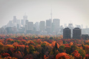 Midtown Posters - Toronto Autumn Poster by Charline Xia