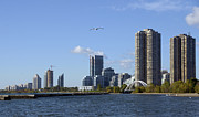 Nikon Photos - Toronto Shoreline by Nina Stavlund