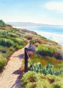 Walkway Posters - Torrey Pines Guy Fleming Trail Poster by Mary Helmreich
