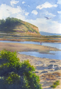 Seagull Paintings - Torrey Pines Inlet by Mary Helmreich