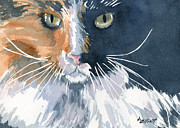 Tortie Paintings - Tortie by Marsha Elliott