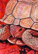 Nevada Painting Posters - Tortoise Poster by Bonnie Kelso