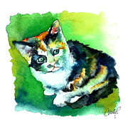 Cat Portrait Posters - Tortoise Shell Kitten Poster by Christy  Freeman