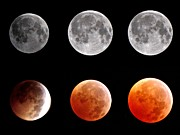 Night Photography Posters - Total Eclipse Of Heart Sequence Poster by Joannis S Duran / Freelance Photographer