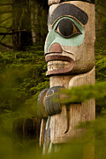 Sitka Framed Prints - Totem Figure in the Forest Framed Print by Tim Grams