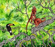 Monkeys Drawings - Toucan and the 2 Monkeys by Doug Hiser