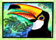 Toucan Originals - Toucan by Chris Crowley