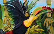 Toucan Paintings - Toucan by Robert Schippnick