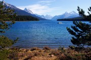 Maligne Lake Framed Prints - Touring Maligne Lake Framed Print by Larry Ricker