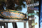 Surfboards Originals - Tourist Info by Deborah Hughes
