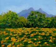 Languedoc Originals - Tournesols au Pic St Loup by Liliane Fournier