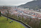 Rooftop Prints - Town Of Heidelberg Viewed Heidelberg Print by Greg Dale