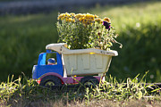 Sun Hats Prints - Toy Truck Planter Print by Gordon Wood