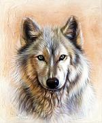 Wolf Portrait Paintings - Trace Two by Sandi Baker