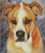 Boxer Painting Prints - Traceys boxer Print by Sue Galos