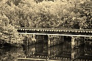 Streetscenes Photos - TRACK ON THE RIVER in SEPIA by Rob Hans