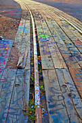 Tracks Print by Barbara Schultheis