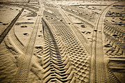 Arid Life Prints - Tracks in . Sand Print by Sam Bloomberg-rissman