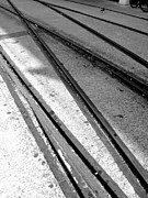 Monochrome Acrylic Prints - Tracks by Roberto Alamino