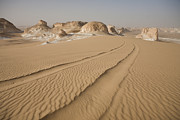 Middle Of Nowhere Prints - Tracks Run Through The Sand Dunes Print by Taylor S. Kennedy