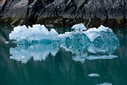 Whalen Photography Photos - Tracy Arm Fjord Ice Two by Josh Whalen